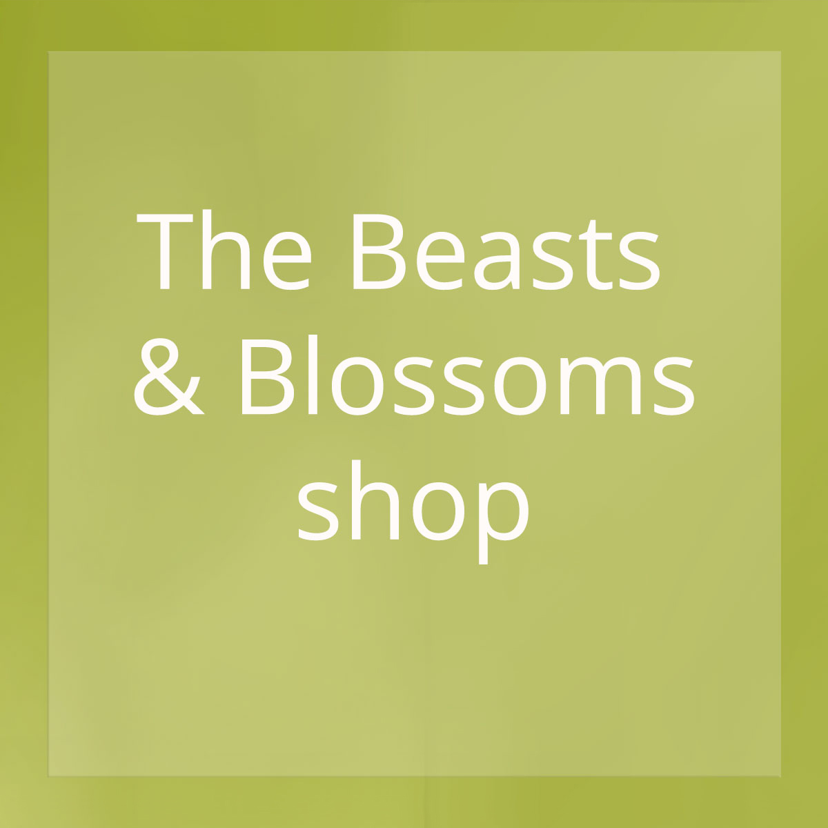 Visit the Beasts & Blossoms shop
