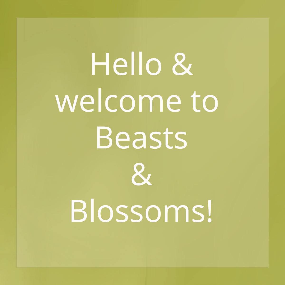 Beasts & Blossoms Nature Photography & Handmade Jewellery - every purchase supports wildlife conservation